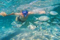 Hombre joven que bucea en arrecife de coral subacuático en la isla tropical Fotografía de archivo libre de regalías
