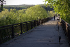 Hombre joven que camina con su perro en el puente viejo Fotografía de archivo libre de regalías