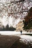 Hombre joven que camina solamente en el campo Imagen de archivo