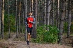 Hombre joven que corre en el rastro en el pino salvaje Forest Active Lifestyle fotografía de archivo libre de regalías