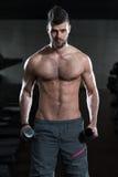 Hombre joven que ejercita el bíceps con pesas de gimnasia Foto de archivo libre de regalías