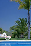 Hombre joven que miente en sunbed sosteniendo un vidrio de Champán Imagen de archivo