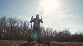 Hombre joven que planta un árbol en primavera Almácigo joven del árbol frutal del sistema del jardinero en el agujero preparado e almacen de metraje de vídeo