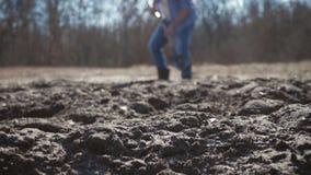 Hombre joven que planta un ?rbol en primavera Alm?cigo joven del ?rbol frutal del sistema del jardinero en el agujero preparado e almacen de video