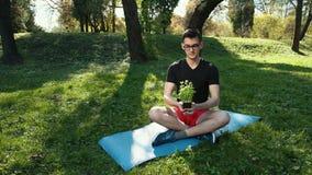 Hombre joven que respira profundamente con Forest In The Background verde Yoga de la práctica en el parque en una manta que mient almacen de metraje de vídeo