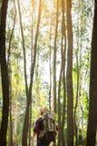 Hombre joven que se coloca solamente en el bosque al aire libre con la naturaleza de la puesta del sol encendido Fotos de archivo libres de regalías