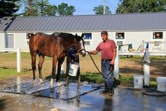 Hombre joven que trabaja con los caballos, haciéndolos listos para las razas del ` s del día, Saratoga Springs, Nueva York, 2017 Imagen de archivo