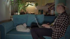 Hombre joven que trabaja en el sofá en el ordenador Al lado del hombre el trabajo en el sofá es un gato blanco 4K almacen de video