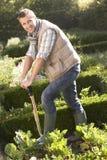 Hombre joven que trabaja en jardín Fotos de archivo libres de regalías