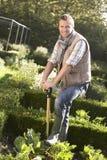 Hombre joven que trabaja en jardín Foto de archivo