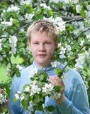 Hombre joven, situación del adolescente y manzano. Foto de archivo libre de regalías