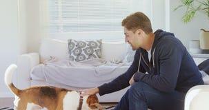 Hombre joven sonriente que se sienta en el sofá que frota ligeramente su perro casero 4K 4k almacen de video