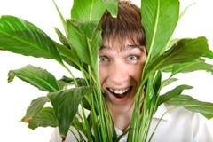 Hombre joven sorprendido en hojas Foto de archivo