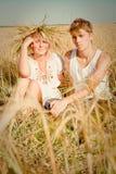 Hombre joven y mujer en campo de trigo Fotos de archivo libres de regalías
