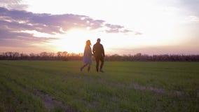 Hombre joven y mujer preciosos de los pares que caminan en campo verde en la puesta del sol contra el cielo encendido rosado almacen de metraje de vídeo