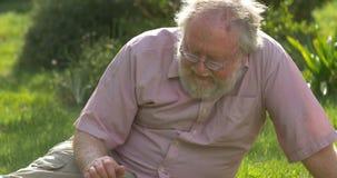 Hombre jubilado y perro mayores que se relajan al aire libre disfrutando del retiro almacen de metraje de vídeo