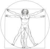 Hombre Leonardo da Vinci de Vitruvian Imagenes de archivo