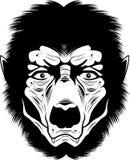 Hombre lobo Fotos de archivo