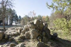 Hombre lobo de las ruinas El índice de Adolf Hitler en Ucrania Imagenes de archivo