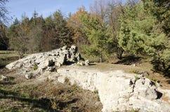 Hombre lobo de las ruinas El índice de Adolf Hitler en Ucrania Foto de archivo