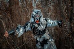 Hombre lobo en el bosque fotografía de archivo libre de regalías