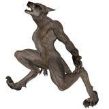 Hombre lobo que grita Fotografía de archivo