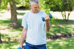 Hombre maduro con pesas de gimnasia en el parque Imágenes de archivo libres de regalías