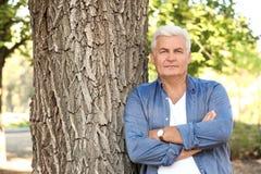 Hombre maduro hermoso que coloca el árbol cercano imagen de archivo libre de regalías