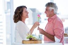Hombre maduro que da la flor a la mujer feliz Foto de archivo libre de regalías