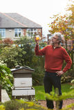 Hombre maduro que mira las abejas de Honey Produced By His Own Fotos de archivo