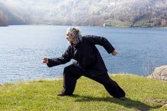 Hombre maduro que practica la disciplina de Tai Chi al aire libre Imágenes de archivo libres de regalías