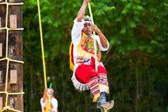 Hombre maya del aviador en la danza de los aviadores Fotografía de archivo libre de regalías