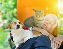 Hombre mayor con el perro y el gato Imagen de archivo