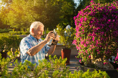 Hombre mayor con la cámara Imagen de archivo