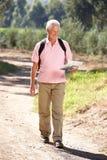 Hombre mayor en correspondencia de la lectura de la caminata del país imagen de archivo libre de regalías