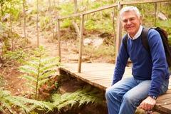 Hombre mayor en el puente en el bosque que mira a la cámara, vista lateral Foto de archivo libre de regalías