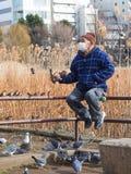 Hombre mayor que alimenta los pájaros imágenes de archivo libres de regalías