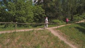 Hombre mayor que corre con su esposa en parque del verano por la mañana Tiroteo del abejón almacen de video