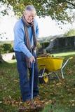 Hombre mayor que recoge las hojas en jardín Imagen de archivo