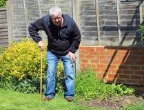 Hombre mayor que se inclina en despertar el palillo o el bastón Imagenes de archivo