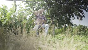 Hombre mayor que se relaja en el jardín almacen de metraje de vídeo