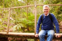 Hombre mayor que se sienta en un puente en un bosque que mira a la cámara Fotografía de archivo