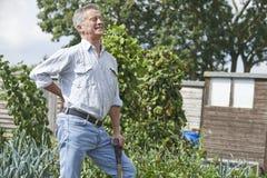 Hombre mayor que sufre de dolor de espalda mientras que cultiva un huerto Imagen de archivo