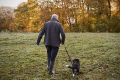 Hombre mayor que toma el perro para el paseo en Autumn Landscape Imagen de archivo libre de regalías