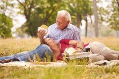 Hombre mayor y mujer de los viejos pares que hacen comida campestre Imagenes de archivo