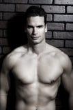 Hombre muscular Imágenes de archivo libres de regalías