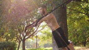 Hombre muscular barbudo que hace excercises del entrenamiento en lazos de la aptitud cerca de un árbol cantidad lenta del efecto  almacen de metraje de vídeo