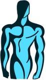 Hombre muscular estilizado aislado en azul Imagen de archivo