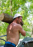 Hombre muscular fuerte que lleva un registro grande de la madera foto de archivo libre de regalías