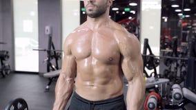 Hombre muscular que se resuelve en el gimnasio que hace ejercicios con el barbell, ABS desnudo masculino fuerte del torso almacen de video